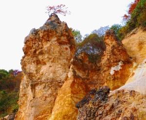 温泉の化石