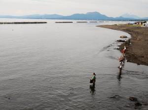 チマイベツ川のサケ釣り