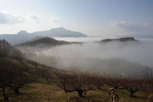 霧の洞爺湖