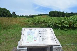 1万年前の丘