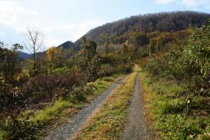 フカバ集落への道