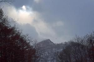 新山ドーム